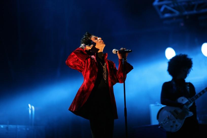 Prince concert Dawn Ellmore Employment